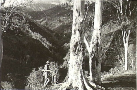 An Australian commando, possibly Sergeant William (Bill) Ernest Tomasetti, in the mountains of Timor on December 12, 1942. (Wiki)