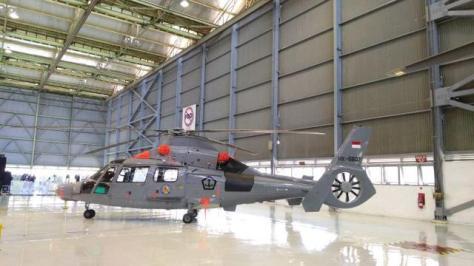 Helikopter Panther HX-5607 PT DI (Liputan6)