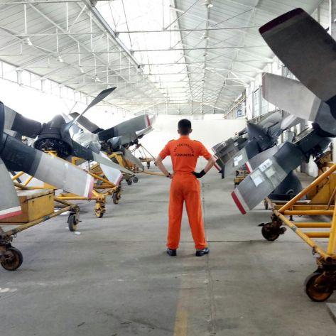 Hercules Propeller 022017 (IMF)
