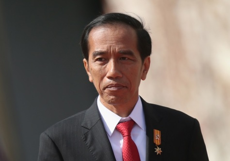Indonesian President Widodo Meets Angela Merkel