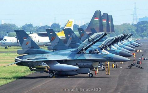 F-16CD and C-130 Hercules of the TNI AU (Megah)