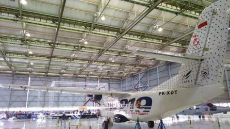 Pesawat N219 Nurtanio produksi PT Dirgantara Indonesia (Tommy Kurnia)