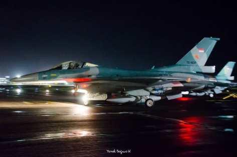 F-16 TNI AU 45